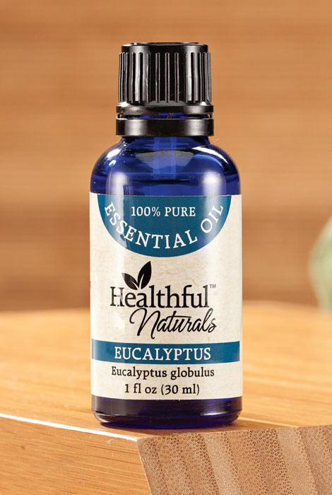 Healthful™ Naturals Eucalyptus Essential Oil, 30 ml - View 1