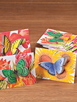 Household & Gifts - Butterfly Die Cut Note Card Set/12